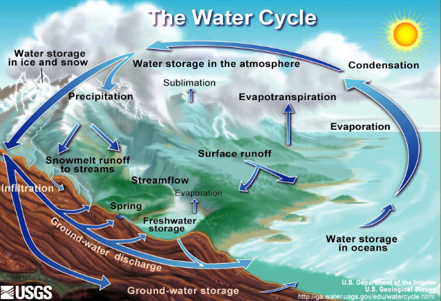 the water cycle, ecosystem
