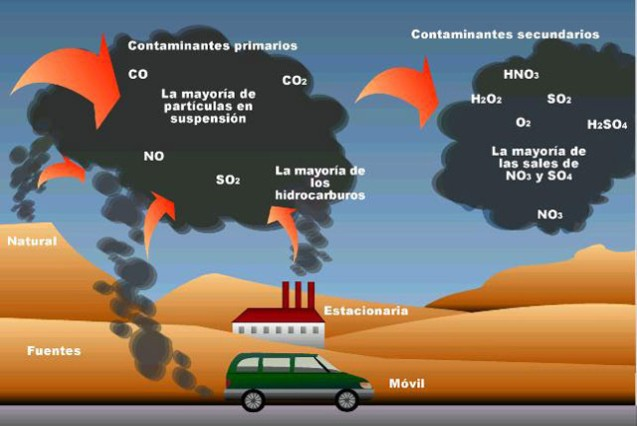 meio ambiente Ciclo do CO2